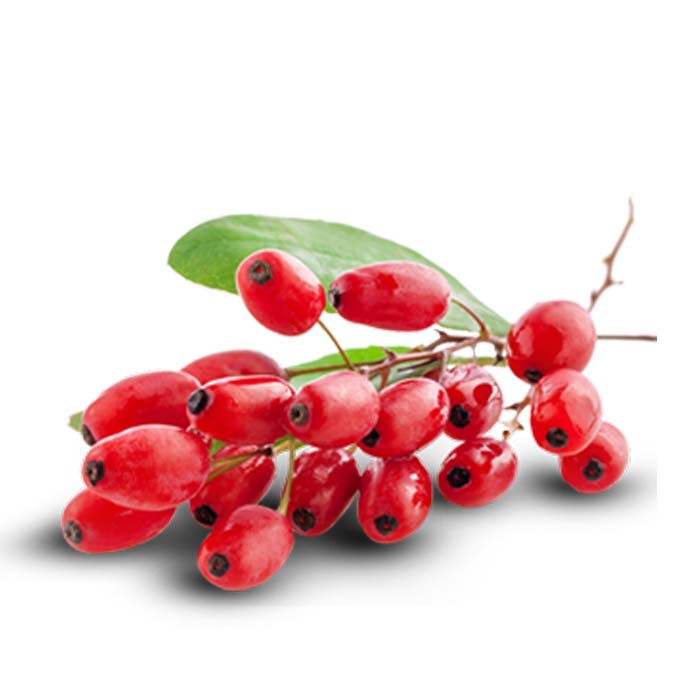 Суперхрана сушен плод годжи бери - 100гр